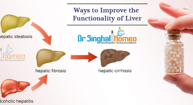 Functionality-of-Liver1